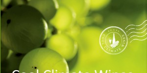 Cool Climate Wines