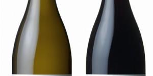 Dexter Chardonnay and Pinot Noir