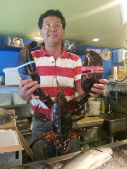 Now that's what you call a lobster!