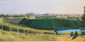 Lenswood Vineyard - Painted by Geoff Weaver