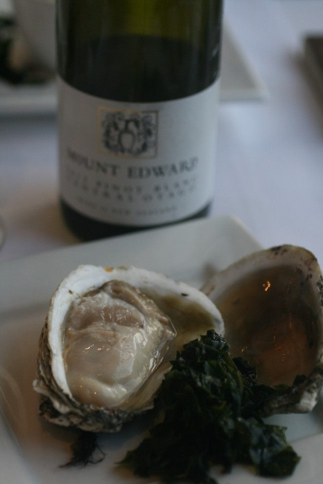 Stewart Island Oysters and Mount Edward Pinot Blanc - Divine