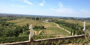 Abbey sits proudly atop the hills in Rosazzo with a splendid view of the vineyards