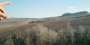 View over the hills of Asti