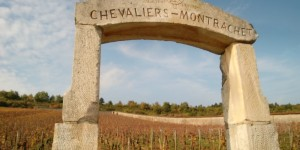 Shalom Burgundy Blog - The Famous Chalevier Montrachet Vineyard