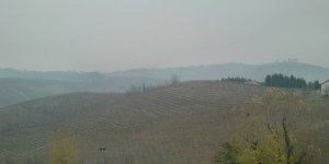 A foggy day in Nieve of Barbaresco  This is why they call the grape Nebbiolo because of the fog Nebbia