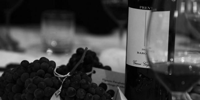 Barolo Wines, Italy