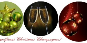 Magnificent Champagnes for Christmas