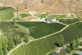 Felton Road vineyard, aerial view
