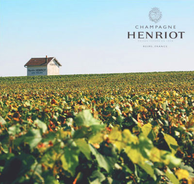 Henriot Champagne vineyard, France