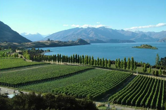 The Otago Region of New Zealand