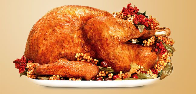 The Perfect Christmas Roast Turkey - The Wandering Palate