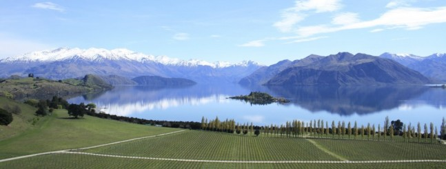Rippon vineyard, Lake Wanaka, Central Otago