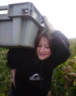 Stephanie Rigoud picking grapes