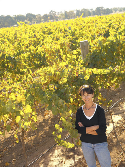 Stephanie Toole amongst Cordon Cut vines