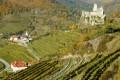 Weingut Nigl vineyards, Austria