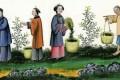 Wine Feng Shui – Biodynamics Wines