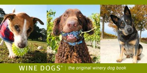 Wine Dogs - the original winery dog book
